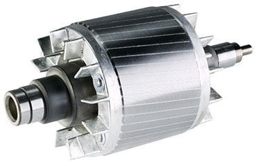 Rotors electric motor